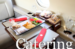 Airplane catering Argentina